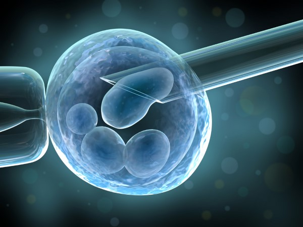Egg Donation Abroad | Donor Egg Treatment Abroad
