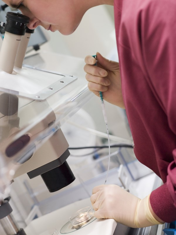 Embryologist role