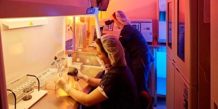 IVF lab at Anatolia