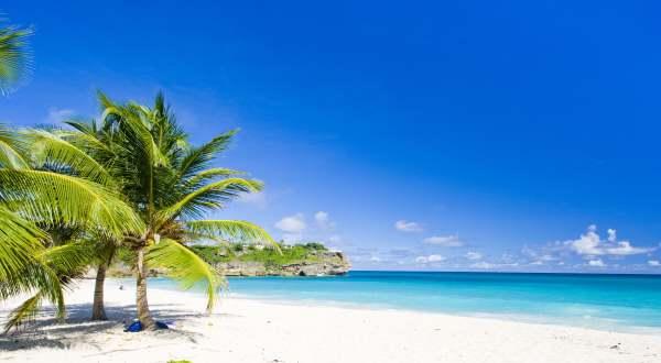 IVF Barbados