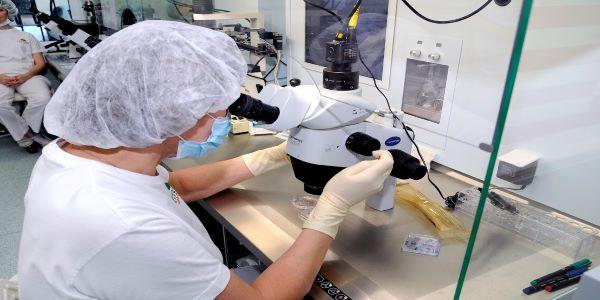 IVF lab at AVA-Peter